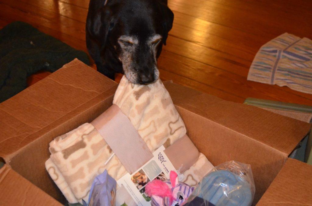 Stella with box 1