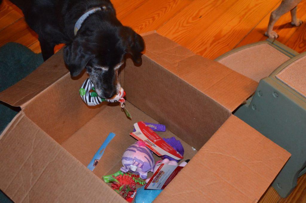 Stella with box 5