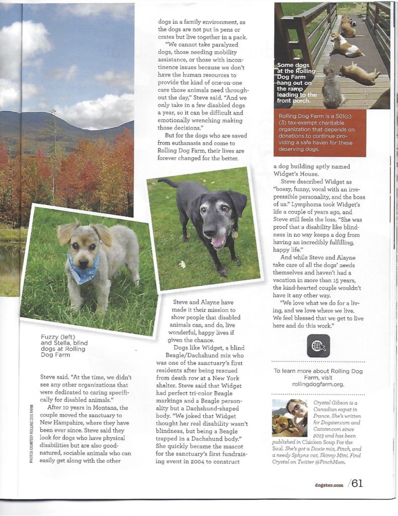 dogster-page-2